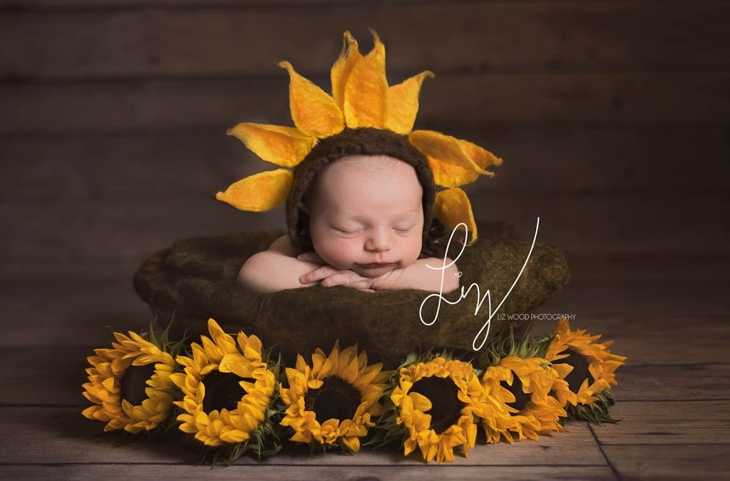 Little Sunflower. Bespoke and creative, beautiful newborn photography, Sudbury, Suffolk, offering photography for special babies across Suffolk, Essex, Cambridge and London.
