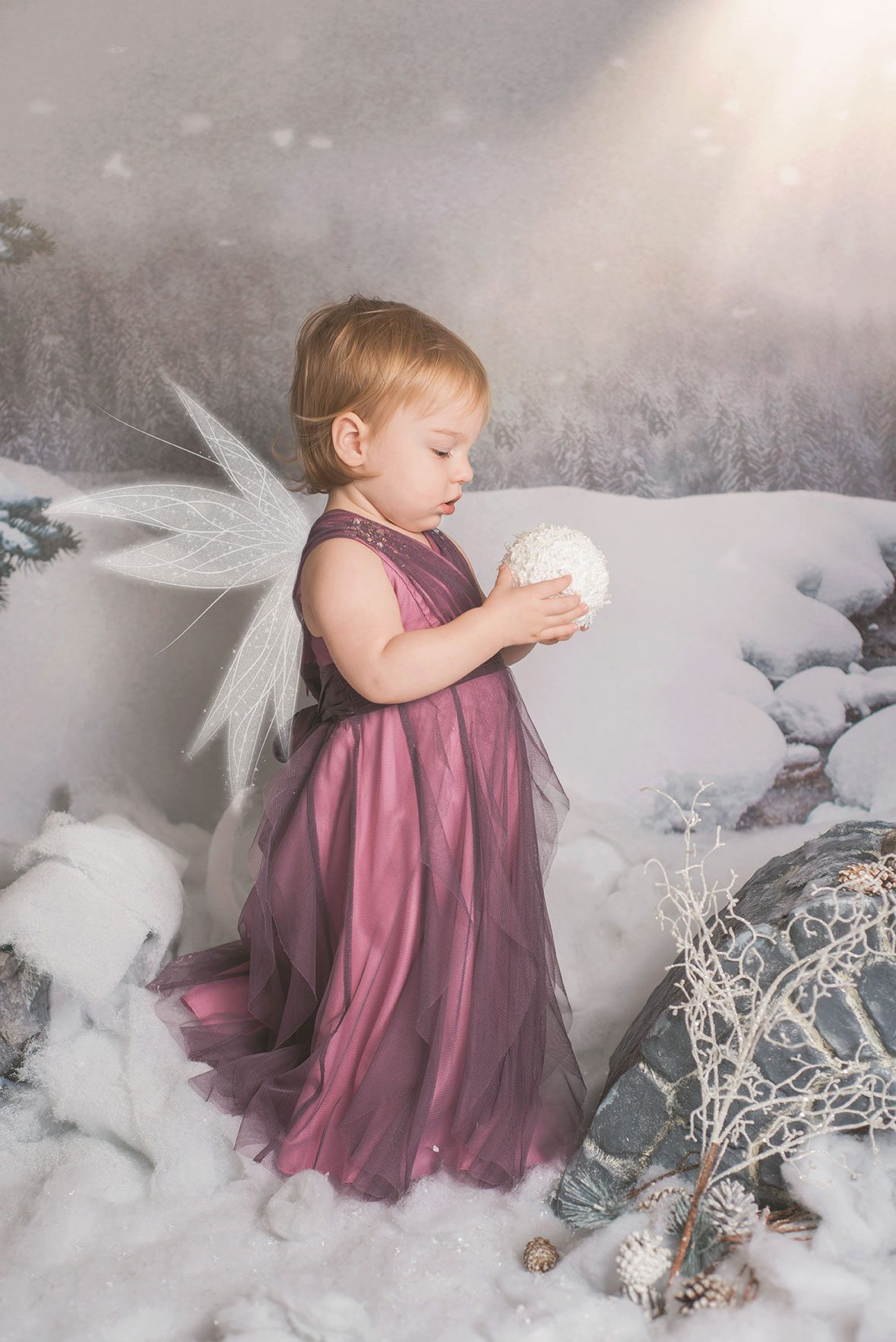 girl in plum dress fairy in the snow photoshoot styled fairy photo sessions - Suffolk and Essex photographer