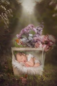 Composite image - baby outdoors in a basket with a real robin that landed on it - Essex baby photographer