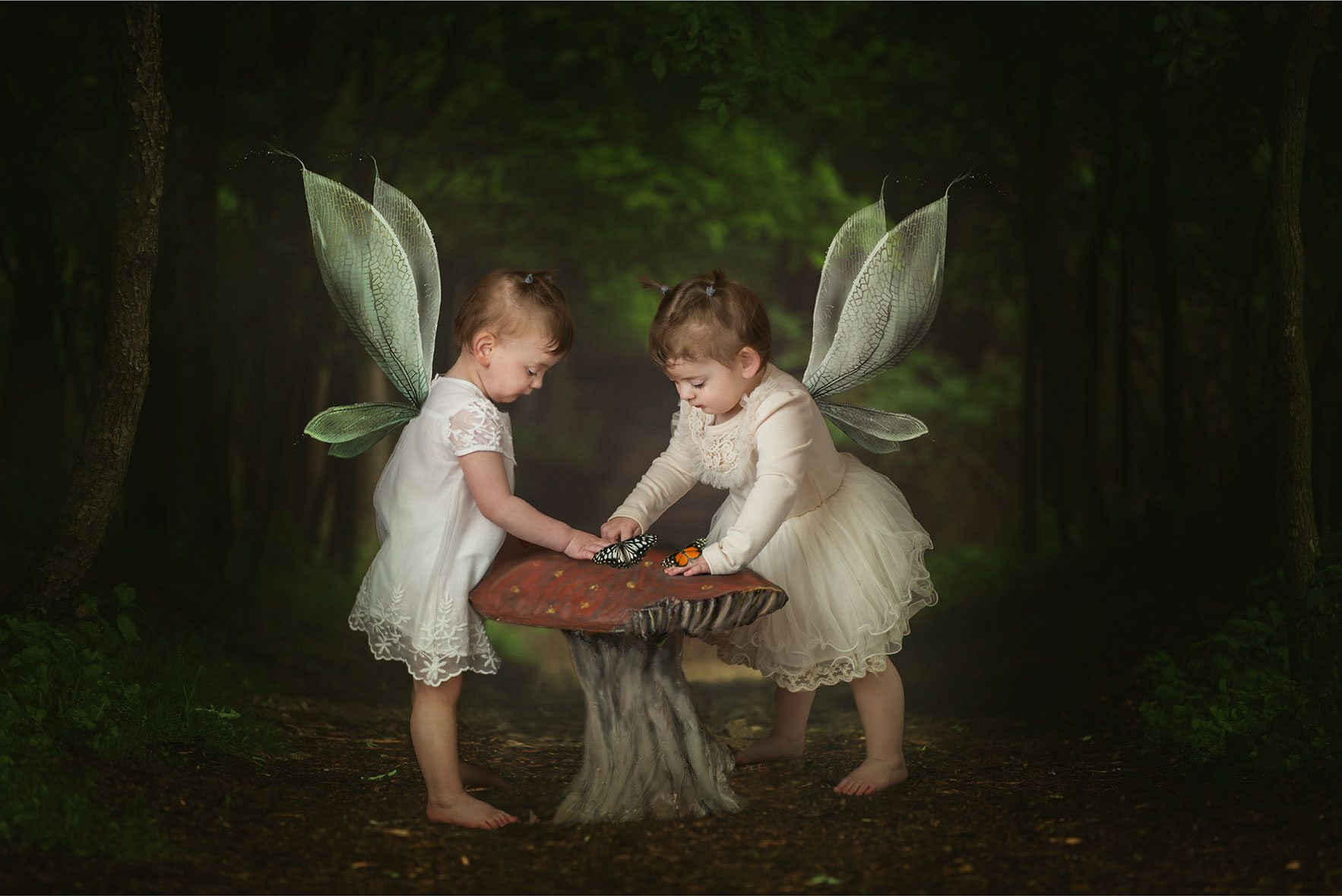 Fairy photographer for Essex and Suffolk children - fairies in the wood