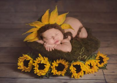 Wormingford-Suffok-baby-girl-laying-in-bowl-with-sunflowers-and-sunflower-hat