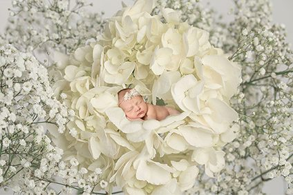 Newborn baby girl laying in flower - Suffolk baby photographer