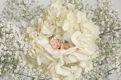 Newborn baby girl laying in flower - Suffolk baby photographer