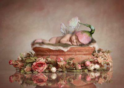 Flower fairy - Essex Newborn Photographer