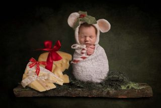 Little mouse on a shelf newborn photography in Essex