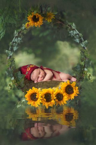 Composite baby laying on Sunflower Swing - Creative Essex Newborn Photographer in Colchester