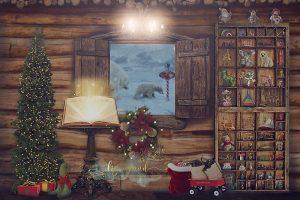 Colchester Essex Christmas photoshoots - Santas workshop
